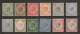 BRITISH HONDURAS 1922 - 1933 WATERMARK MULTIPLE SCRIPT CA SET OF 12 INC. BOTH CATALOGUE LISTED 5c STAMPS MOUNTED MINT - British Honduras (...-1970)
