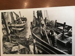 CPA - LE CROTOY 80 Somme : Retour De Bateaux De Pêche - Le Crotoy