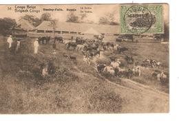 Belgisch Congo Belge Entier Vue 36 Staney.Falls CP 5c + TP Mols 5c C.Lisala 6/1/1919 Non Voyagée PR5239 - Entiers Postaux