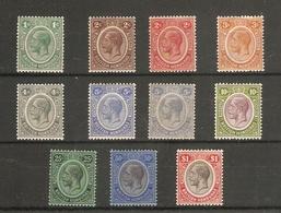 BRITISH HONDURAS 1922-33 WATERMARK MULTIPLE SCRIPT CA SET OF 11 TO $1 INC. BOTH CATALOGUE LISTED 5c STAMPS MOUNTED MINT - British Honduras (...-1970)