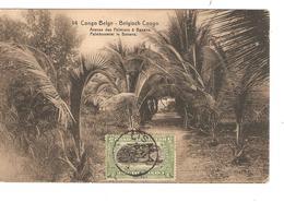 Belgisch Congo Belge Entier Vue 14 Banana CP 5c + TP Mols 5c C.Lisala 6/1/1919 Non Voyagée PR5247 - Entiers Postaux