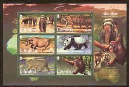 Gibraltar 2011 Yvertn° Bloc 103  *** MNH Cote 9 Euro Faune Endangered Animals - Gibraltar
