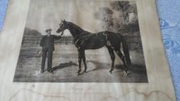 """PHOTO  DE """"   FLYING  FOX """"  NE EN 1896  PAR  """" ORME Et   VAMPIRE  """"    APPARTENANT  A   M   EDMOND  BLANC - Equitation"""