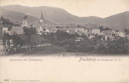 PUCHBERG Am Schneeberg (NÖ) - Panorama, 1900?, Gute Erhaltung - Autres