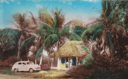 ANTILLES. HAITI. RARETÉ  .LANDSCAPE. PAYSAGES ET VOITURE PEUGEOT EN STATIONNEMENT. ANNEE 1953 - PKW
