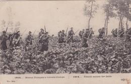 MARINS FRANCAIS A TRAVERS CHAMPS / 1914 / 15 E SERIE / ELD - Weltkrieg 1914-18