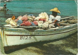 ILE MAURICE CPM à Saisir Barque Paire Verticale - Maurice (1968-...)