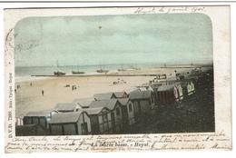 La Marée Basse - Heyst - 1902 - Edit. Tytgat - Heyst / D.V.D. 7389 - 2 Scans - Heist