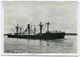 KONINKLIJKE NEDERLANDSCHE STOOMBOOT MIJ S.S. BAARN - Cargos