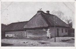 AK Brest-Litowsk - Storchidyll Auf Einem Russischen Wohnhaus - Feldpost - 1918 (34849) - Weißrussland