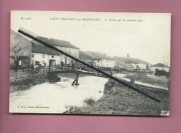 CPA - Saint Maurice Sur Mortagne - Le Molné Par Les Grandes Eaux - Autres Communes