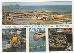 {76618} 35 Ille Et Vilaine Cancale , Multivues ; 400 Hectares De Parcs à Huîtres , Divers Aspects - France