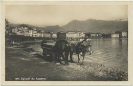 Saluti Da Lugano - Ochsengespann Am See - TI Tessin