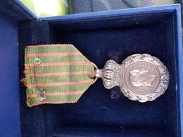 Rare  Medaille De Saint Hélène Napoléon 1er - Medals