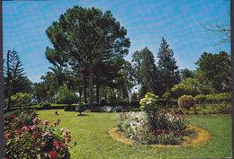 Cyprus PPC Limassol Park Turkish Cyprus GAZI-MAGU 1977 To Denmark (2 Scans) - Zypern