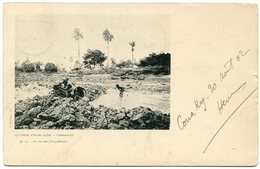 French Guinea - Conakry - 1902 - Guinea