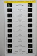 LESTRADE :  608 C   CHATEAU DE CHENONCEAU : MUSÉE DE CIRE - Stereoscopes - Side-by-side Viewers