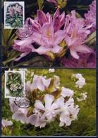 Flowers From Strandja - Bulgaria / Bulgarie 2006 -  4 MC - Unclassified