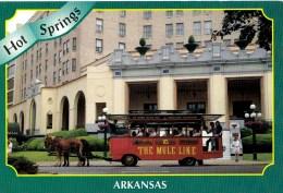 The Mule Line, Hot Springs, Arkansas, USA Unused - Hot Springs