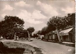 Cpsm 32 CASTERA-VERDUZAN  Place Du Foirail , Café Dumas, A.Silesie Prop. , 1957 Peu Courante - Castera