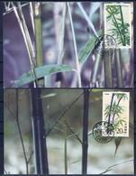 Bamboo -  China 1993 -  4 MC - Plants