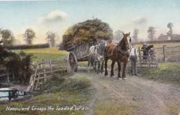 AP64 Social History - Homeward Creeps The Loaded Wain - Horses With Hay Cart - Agriculture