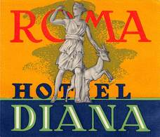 "D7825 "" HOTEL DIANA - ROMA "" ETICHETTA ORIGINALE - ORIGINAL LABEL - - Adesivi Di Alberghi"