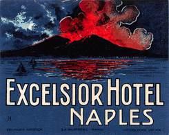 "D7827 ""  HOTEL EXCELSIOR - NAPLES "" ETICHETTA ORIGINALE - ORIGINAL LABEL - - Adesivi Di Alberghi"