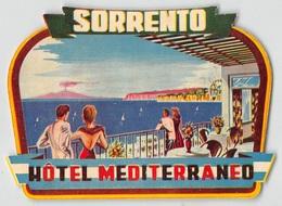 """D7829 """" HOTEL  MEDITERRANEO - SORRENTO - ITALIA """" ETICHETTA ORIGINALE - ORIGINAL LABEL - - Adesivi Di Alberghi"""