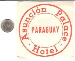 ETIQUETA DE HOTEL  -HOTEL ASUNCION PALACE  - PARAGUAY - Hotel Labels