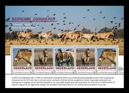 Netherlands (GP) 2017 No. 2017-181/85 Fauna. Endangered Animals. Przewalski's Horse MNH ** - Period 2013-... (Willem-Alexander)