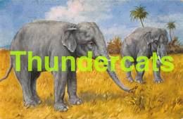 CPA ILLUSTRATEUR ELEPHANT   ARTIST SIGNED ELEPHANT H MILLER INDISCHER ELEFANT - Éléphants