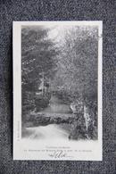 MARTIGNY LES BAINS - Le Ruisseau De MEUZON Dans Le Parc De La Station, 1902 - Autres Communes