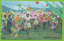 Carnival In Trinidad - Trinidad