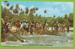 Seine Fishing At Mayaro - Trinidad - Trinidad