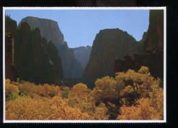CPM Neuve ZION National Park The Temple Of Sinawava - Zion