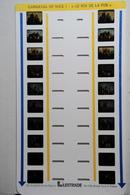 LESTRADE :  CARNAVAL DE NICE  1 : ROI DE LA PUB - Stereoscopes - Side-by-side Viewers