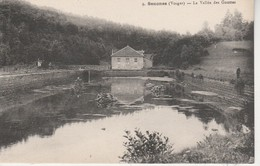 88 - SENONES - La Vallée Des Gouttes - Senones