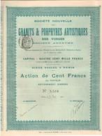 Ancienne Action - Société Nouvelle Des Granits Et Porphyres Artistiques Des Vosges - Titre De 1901 - Mines