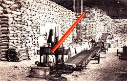 Usines - Fabrieken - Amoniaque Synthétique & Dérivés - WILLEBROECK - Willebroek