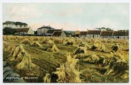 FIFE : NEWTOWN OF BALCORMO - Fife