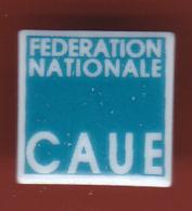 52927-Pin's.CAUE .conseil D'architecture, D'urbanisme Et De L'environnement.porcelaine.signé Tosca Limoge. - Administrations