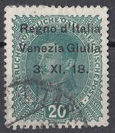 VENEZIA GIULIA, OCCUPAZIONE ITALIANA - 1918 - Unificato 7, Usato. - 8. WW I Occupation