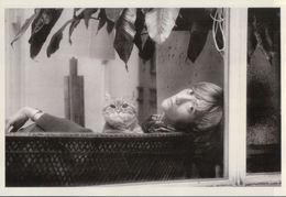 3640A  CHAT   NON  ECRITE - Cats