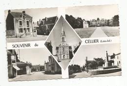 Cp , 44 , Souvenir Du CELLIER , Multi Vues , écrite 1956 , Ed. Combier - Le Cellier
