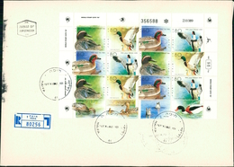 > Israel 1989, Gänsevögel, Gänse, Oie, Goose, Bogen, Sheet, Michel 1131 - 1134 (4-194) - FDC