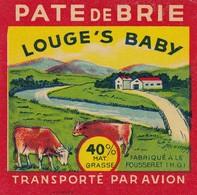 ETIQUETTE FROMAGE  PETIT CARRE -  PARE DE BRIE -   LOUGE'S BABY -   Fab En HTE GARONNE -  31 - Cheese