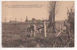 59.563/ MARQUETTE EN OSTREVENT - La Distillerie Et Les Prairies Du Marais - France