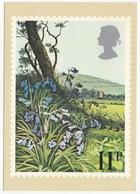 Bluebells  - British Flowers  (11p Stamp) -  1979 - (U.K.) - Postzegels (afbeeldingen)