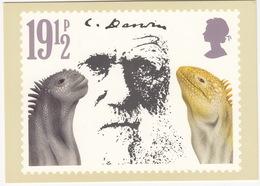 'Iguanas' - Charles Darwin  (19,5p Stamp) -  1982 - (U.K.) - Postzegels (afbeeldingen)